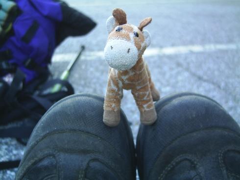 Girafa and Boots